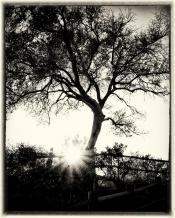 Slough_SanMarcos_California_feburary_Sunset_portrait_JerrySlough_Photography_Art-2